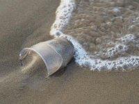 Atık plastikler denizdeki yaşamı tehdit ediyor