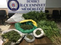 Manisa'da uyuşturucu operasyonu: 1 kişi tutuklandı
