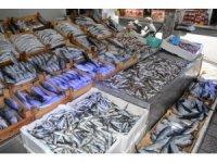 Tezgahlar balık çeşitleriyle doldu