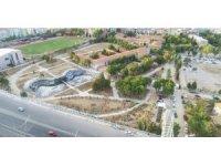 Mega projede 57 bin ağaç toprakla buluşacak