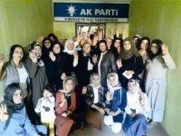 AK Partili kadınlardan ilçelere çıkarma