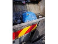 Zonguldak'ta 40 kilogram mantar imha edildi