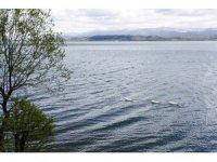 Sapanca Gölü'nün seviyesi iyi durumda