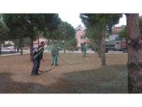 Burhaniye' de parklara son sistem çimlendirme yapılıyor