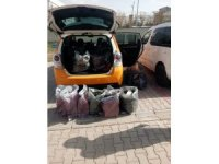 Van'da ilaç kaçakçılığı