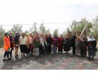 Belediye tesislerine vatandaşların ziyareti devam ediyor