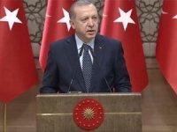 Erdoğan'dan hayvan hakları talimatı: Yasa hâlâ neyi bekliyor? Bir an önce çıkartın