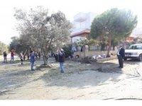 Burhaniye Belediyesi zeytin hasadına başladı