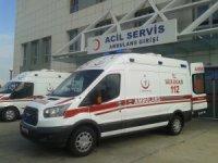 Tekirdağ'da mantardan zehirlenen 4 kişi hastanelik oldu