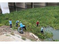 Asi Nehri temizleniyor