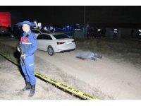 Arazi kavgasında amca 2 yeğenini av tüfeğiyle öldürdü