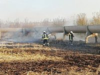 Anız yangını elma ağaçlarına sıçramadan söndürüldü