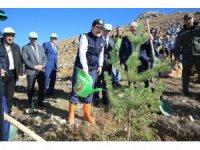 'Fidanlar, fidanlarla büyüyecek' projesi ile 150 bin fidan toprakla buluştu
