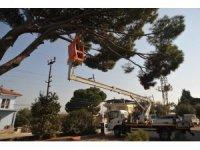 Büyükşehir Başaran'ın cadde ve sokaklarını temizledi