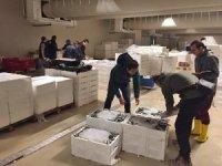 Balık halindeki denetimlerde 22 ton balığa el konuldu