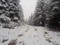 Ordu'nun yükseklerinde kar etkisini gösteriyor