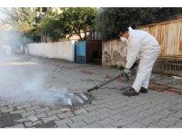 Payas'ta kanalizasyonda dumanlı haşere ilaçlaması