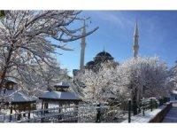 Karlıova'dan kar manzaraları