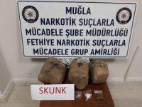 Fethiye'de uyuşturucu operasyonu: 2 gözalt