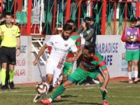 TFF 2. Lig: Amed Sportif Faaliyetler: 0 - İnegölspor: 1