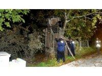 Ağaca çarpan otomobil şaha kalktı:1 yaralı