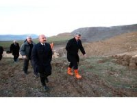 Eski kömür sahasına 10 bin fidan dikilecek