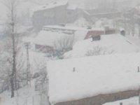Hakkari'de karla mücadele çalışması