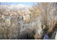 Hakkari'de ağaçları buz tuttu