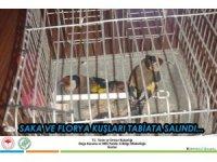 Antalya'da saka ve florya kuşları doğaya salındı