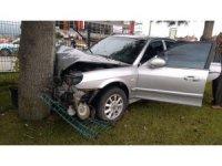 Kontrolden çıkan otomobil refüjdeki ağaca çarptı