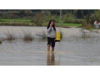 Manavgat'ta yağmur sebebiyle dere ve kanallar taştı