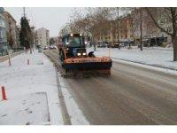 Edirne'de tuzlama çalışmaları devam ediyor