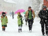 Ankara ve 10 ilde okullara kar tatili!