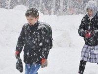16 İlde okullara kar tatili