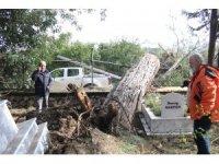Fırtınanın yerinden söktüğü ağaçların mezarlıkdaki tahribatı gündüz ortaya çıktı