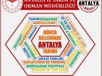 Antalya tarımı 4 dile çevrildi