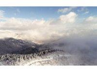 Soğuk Su Milli Parkı ve Çamkoru Tabiat Parkı'ndan kartpostallık görüntü