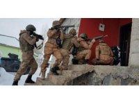 Van'da terör operasyonu: 10 gözaltı