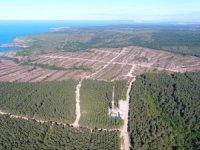 'Japon şirket, Sinop'taki nükleer güç santrali projesini askıya aldı' iddiası
