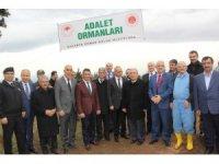 Sakarya'da 'Adalet Ormanı' oluşturuldu