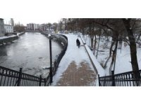 Kars'ta parklara yem bırakıldı