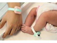 Pembe kodla bebekler güvende