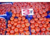 Tokat'ta domates tanzim satış fiyatından satılıyor