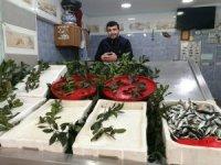 Balıkçıların tezgahları boş kaldı, bazı dükkanlar kapandı