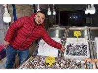 Fatsa'da hamsinin kilosu 30 TL