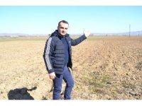 Afyonkarahisar'da patates ekim yasağı kısmi alanda olacak
