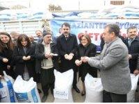 Gaziantep'te 350 çiftçiye 70 ton nohut tohumu dağıtıldı