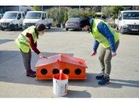 Maltepeli gençler sokaktaki dostları için boyadılar