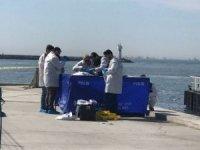 Kadıköy'de denizden iki ceset çıktı