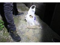 İstanbul'da şafak vakti narkotik operasyonu: Çok sayıda gözaltı